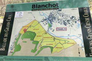 Chablis-Blanchot