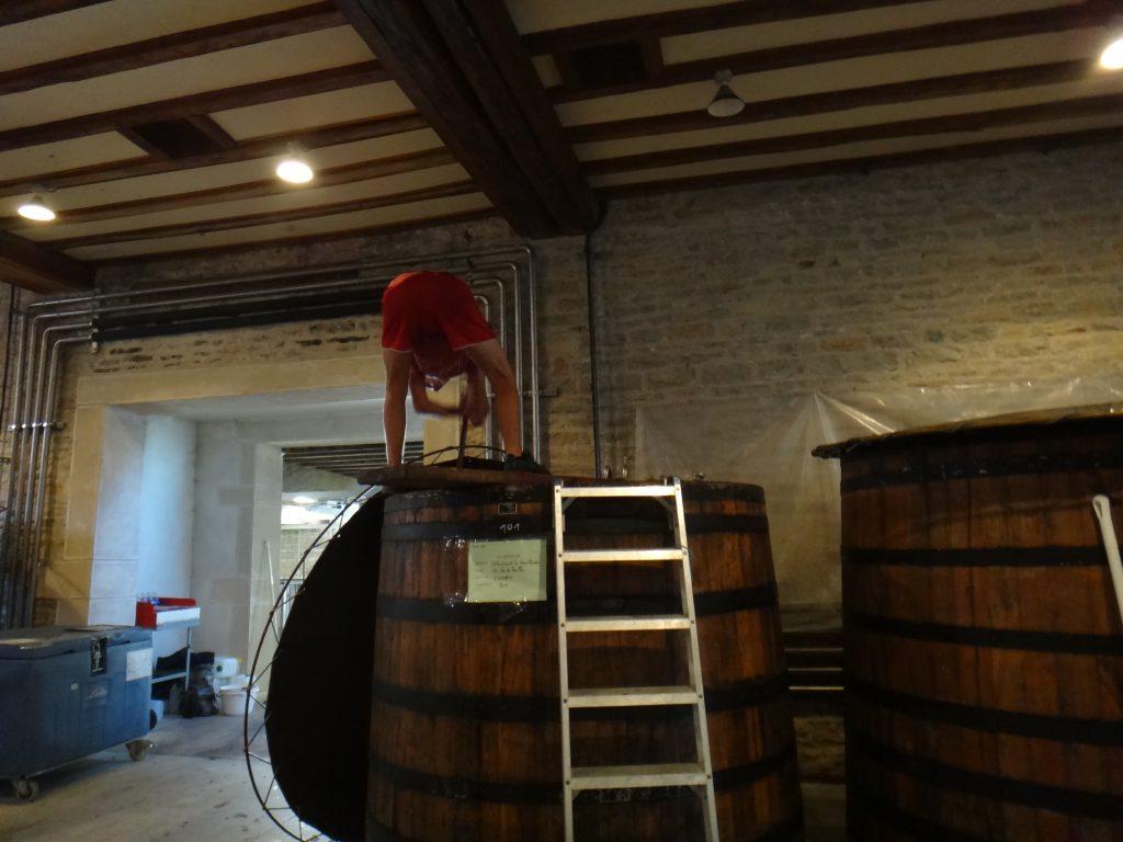 ピジャージュ-ワイン醸造