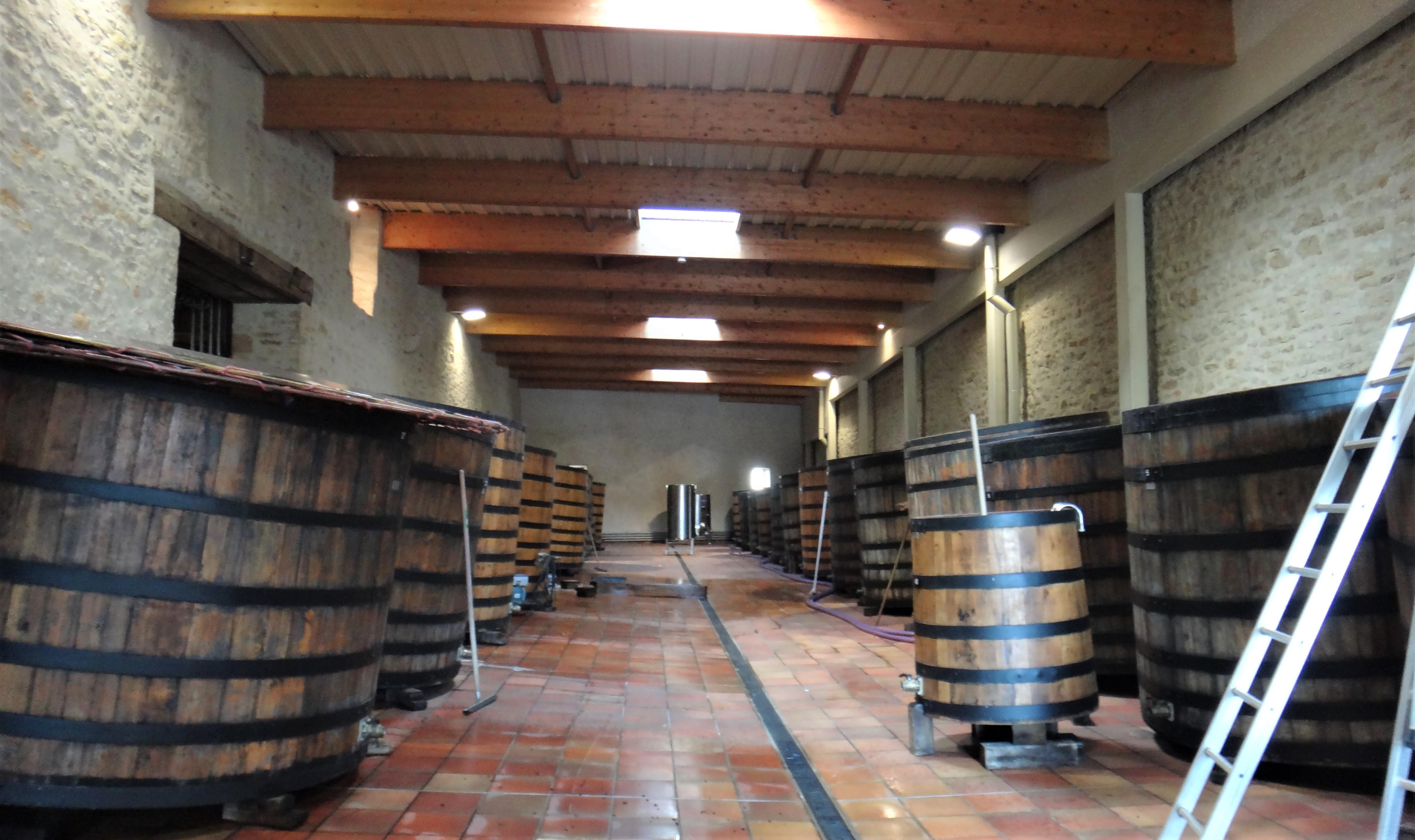 ワイン醸造
